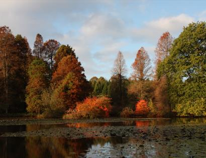 Bedgebury National Pinetum & Forest