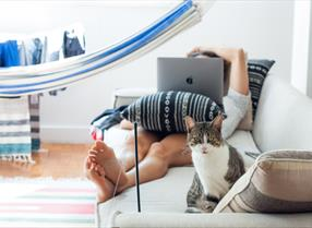 Woman lying on sofa with laptop and cat