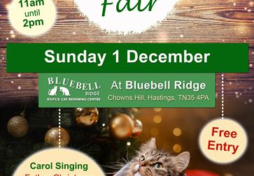 Bluebell Ridge Christmas Fair
