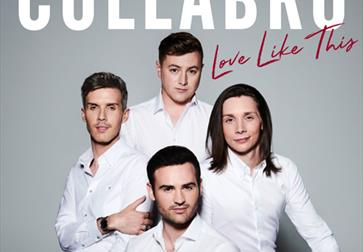 Collabro plus support