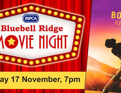 Bluebell Ridge Movie Night at Kino-Teatr