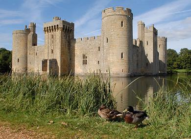 Guided moat walk at Bodiam Castle