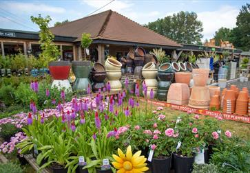 Flowers and gardening equipment at Planters in Etchingham on the A21.